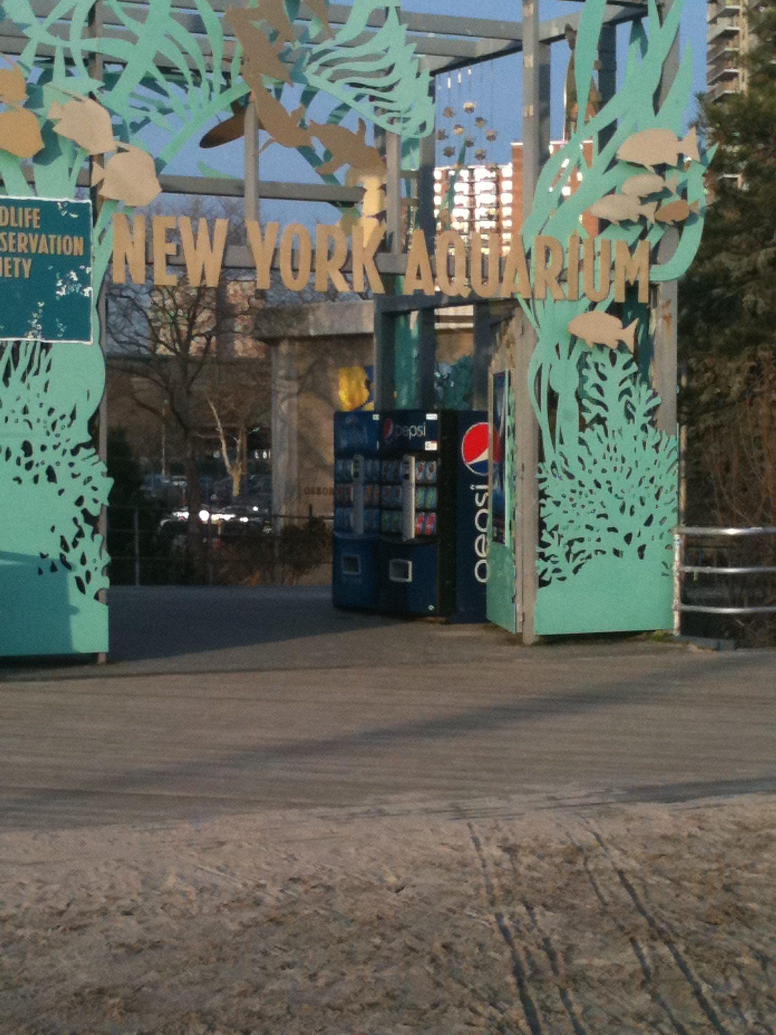Ny Aquarium Day Trip To Brooklyn