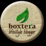 boxtera_Mommy_Blogger_lifestyle copy