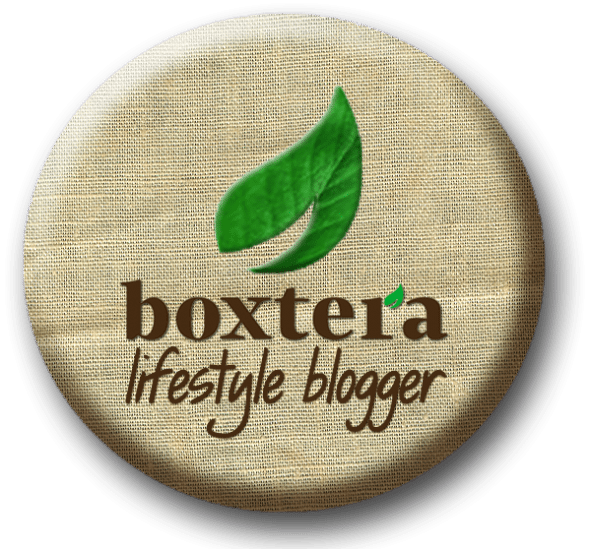 boxtera_Mommy_Blogger_lifestyle copy