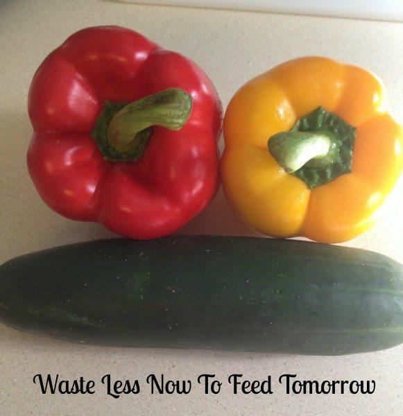 Future Food 2050