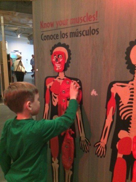 Healthyville Exhibit LICM