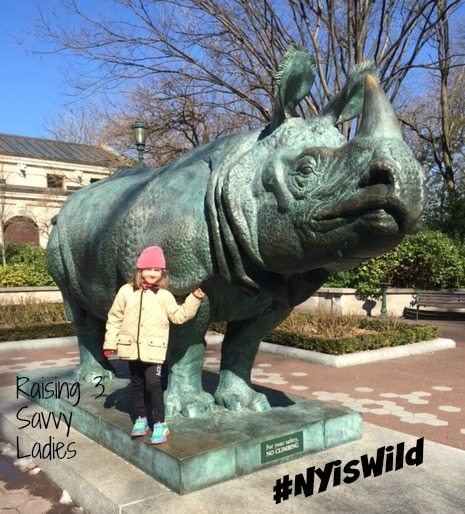 #NYisWild Bronx Zoo
