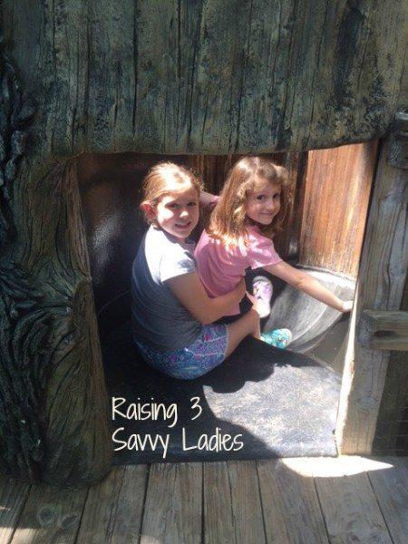 Children's Zoo R3SL