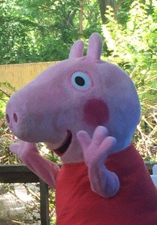 Peppa Pig Bronx zoo
