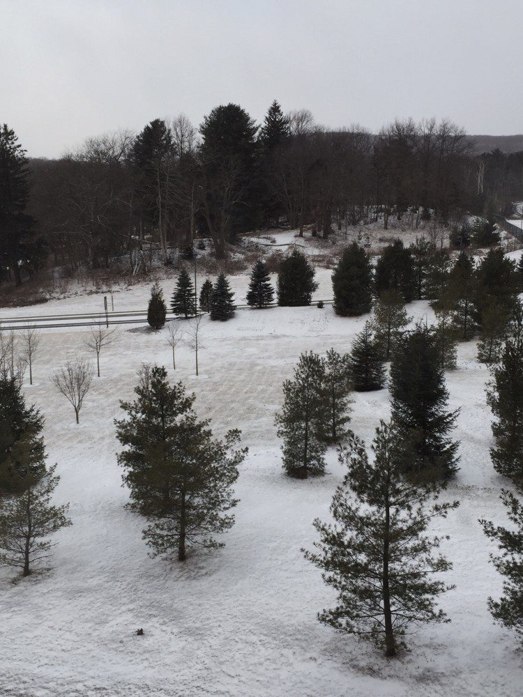 Snow Poconos