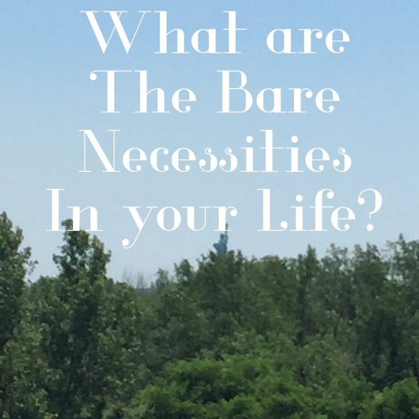 What are the Bare Necessities in your life (2)